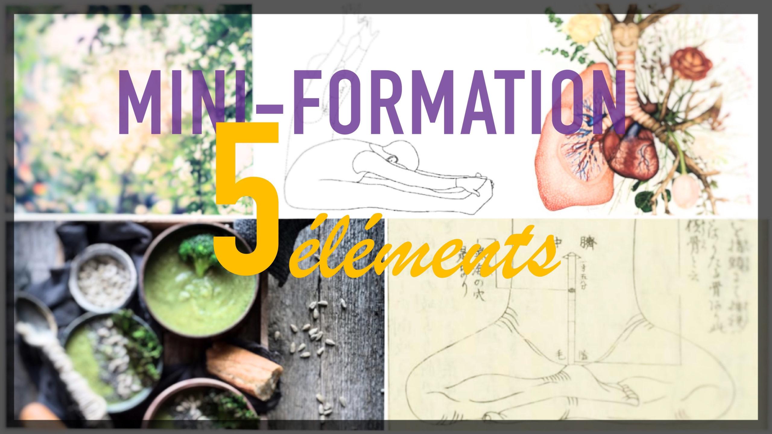 Mini-formation 5 éléments